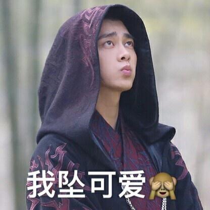 鹿晗李易峰赵丽颖胡歌 明星表情包谁最强?--人