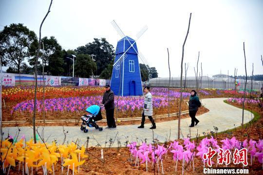 12万只颜色亮丽的风车组成不同主题的景观造型。 邓龙华 摄