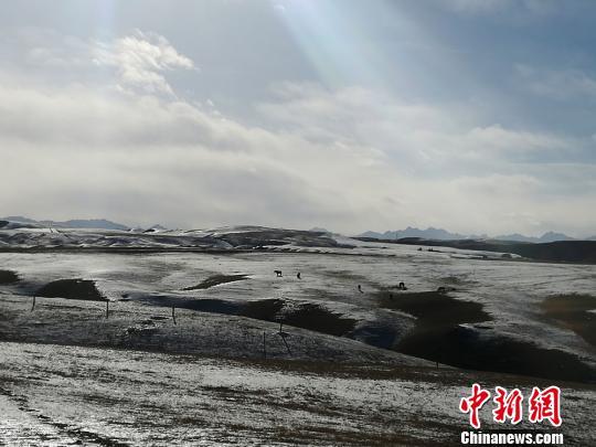 肃南裕固族自治县隶属于甘肃省张掖市,是中国唯一的裕固族自治县,地处河西走廊中部、祁连山北麓。 杨艳敏 摄