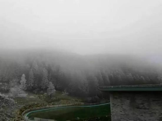 早上周宁仙凤山森林公园里有一排排雾凇,甚是好看.图片