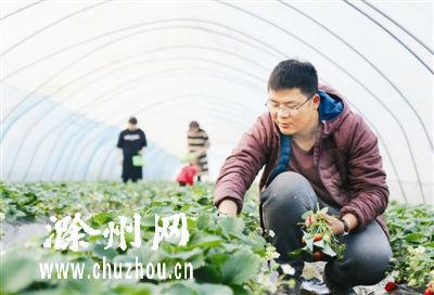 滁州:返乡大学生追梦田园
