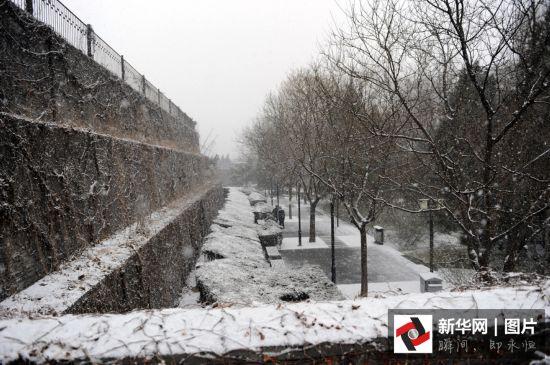 北京迎首场春雪