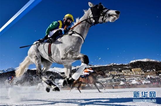 直击瑞士雪地赛马大会