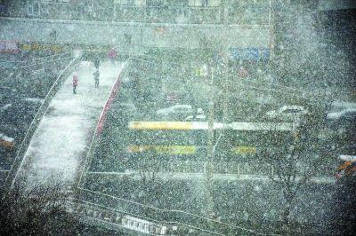 扫雪不 扫 兴 天安门广场扫雪 米 字形作业图片