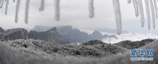 雾凇冰挂扮美张家界(组图)