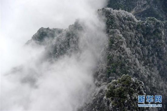 这是2月22日拍摄的湖南张家界天门山景区.-雾 冰挂扮美张家界 高清图片