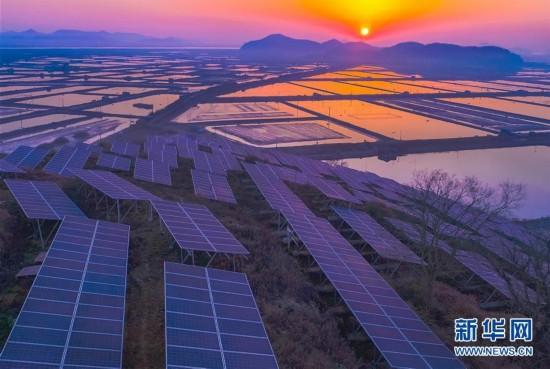 """浙江宁海越溪乡""""农光互补""""光伏发电项目经济效益显著"""