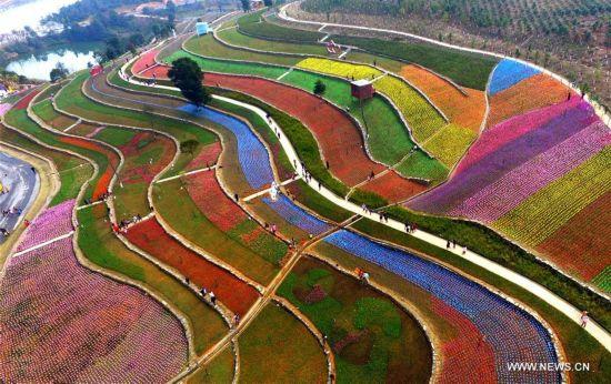 Scenery of tulip fields in Xinyu, east China
