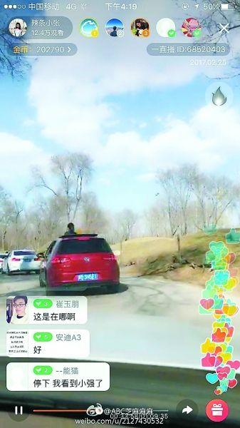 八达岭野生动物园:车窗开了黑熊险些钻进车里--北京