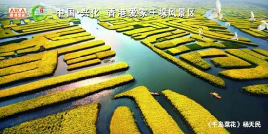 中国・兴化 香港爱家千垛风景区