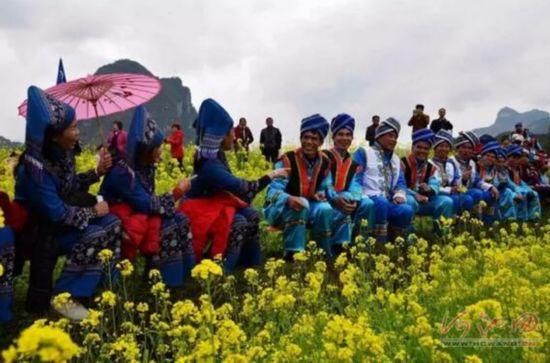 99位老人在宜州祥贝油菜花海唱山歌喜迎春来到
