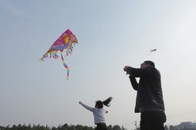 春光明媚南通海安市民到七星湖放风筝