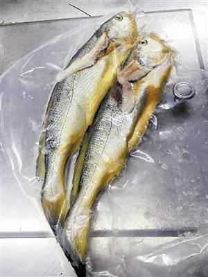 两条小黄鱼4628