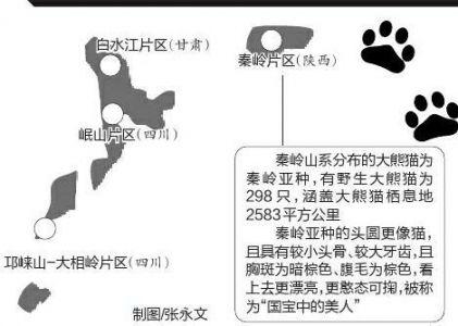 大熊猫国家公园试点方案获批 将覆盖川陕甘三省