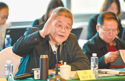 全国政协体育界别举行小组会讨论政府工作报告
