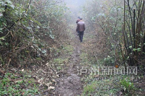 記者一行人前往金沙村鹽馬古道途中