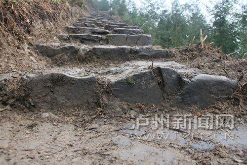 敘永縣營山鎮金沙村發現的鹽馬古道是一條輔道