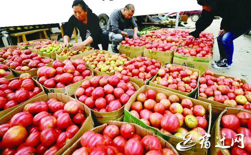 气温回暖蔬菜大量上市 宿迁市蔬菜价格回落
