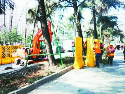 南京北京东路力争打造环境整治示范道路