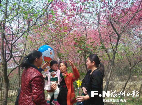 """福州""""花漾""""新农村 等你踏青来赏春"""