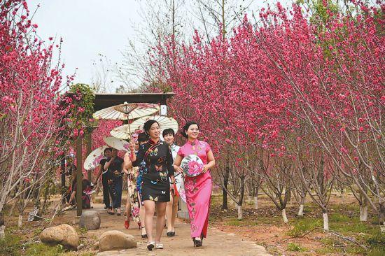 泉州德化:春日赏花正当时