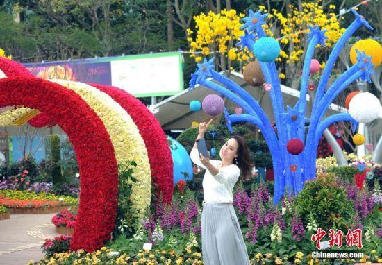 香港花卉展览即将开幕 预计入场人数达55万
