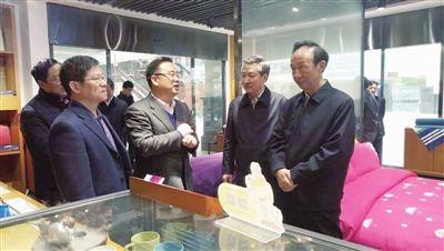 江苏省政协副主席范燕青一行调研海门叠石桥