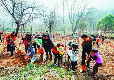 南京市2万多人报名义务植树 植树面积达250亩