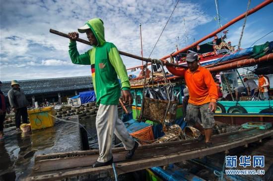 组图:繁忙的印尼渔村