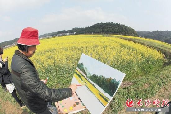 画家在油菜花海中挥毫创作。
