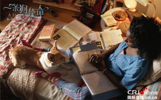 《一条狗的使命》曝特辑 吸引情侣档助力票房