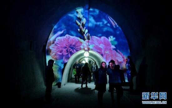 (国际)(5)克罗地亚举办灯光节