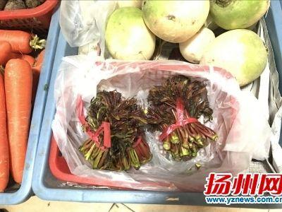 香椿零售价领跑所有野菜