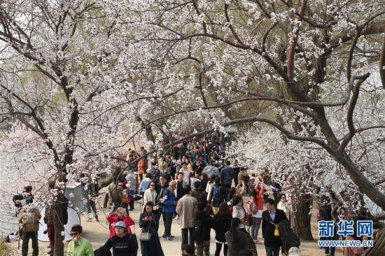 (春季美丽生态)(1)春光明媚颐和园