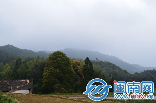 武济村02