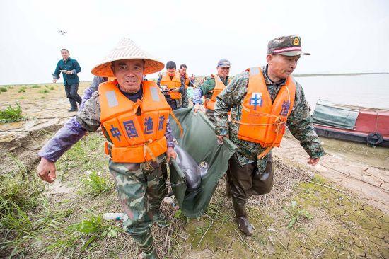 3月16日,工作人员在鄱阳湖都昌水域转运江豚。