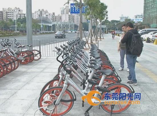 东莞将划设公共区域自行车停车位