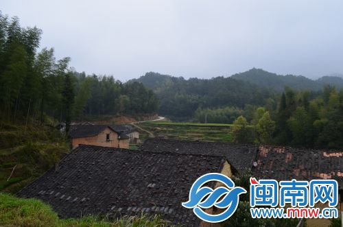 武济村05