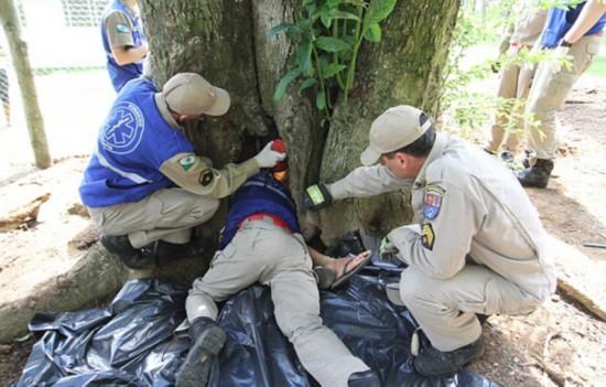 滑稽!巴西小男孩追逐兔子被困树洞2小时