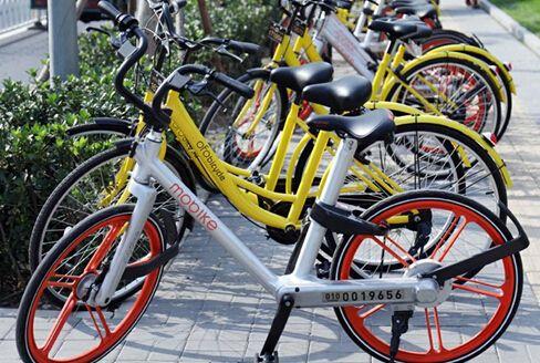 共享单车11
