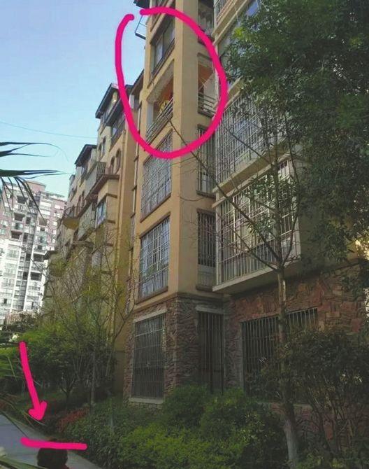 二年级学生帮邻居取钥匙 从四楼坠地生命垂危