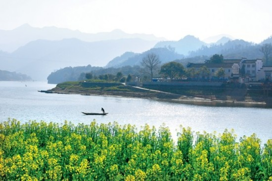 阳春三月,新安江风景如画.本报记者潘成 摄
