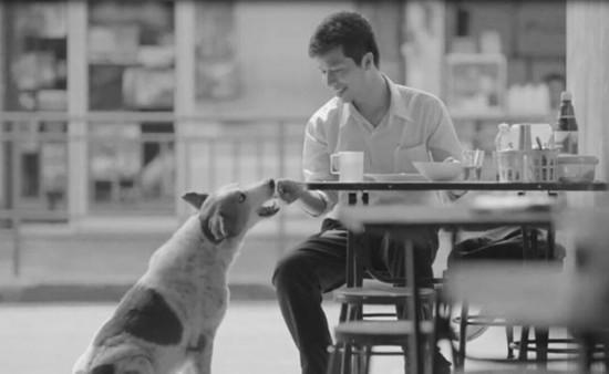 """""""鸡汤,我只喝泰国的""""? 泰国广告为何总能戳中泪点"""