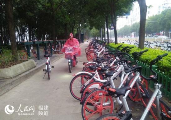 农大东门停放数百辆共享单车。  张霜霜 摄