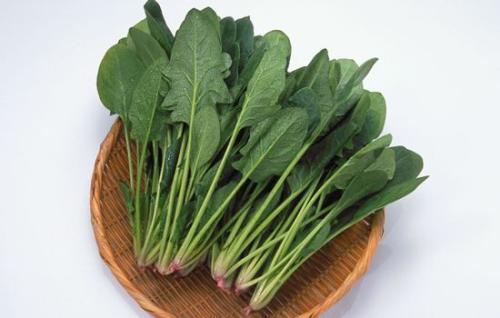 菠菜是个好东西 治便秘、去头屑、还能补叶酸