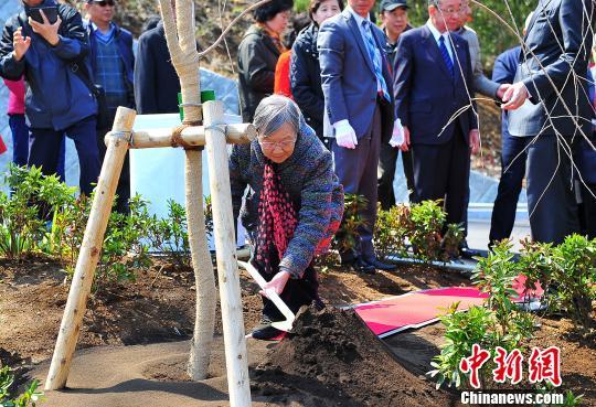 """图为代表团成员依次为新栽植的""""西花厅樱""""培土。 王健 摄"""