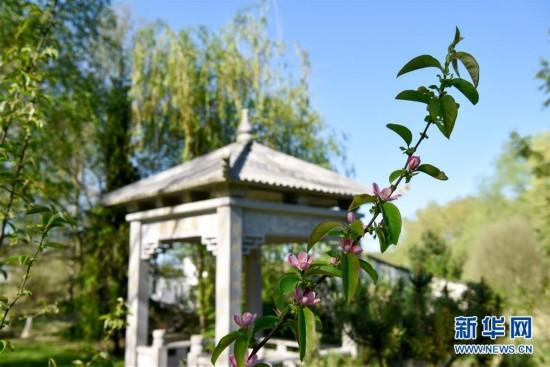 (国际)(1)探访法国第一座中国园林――怡黎园