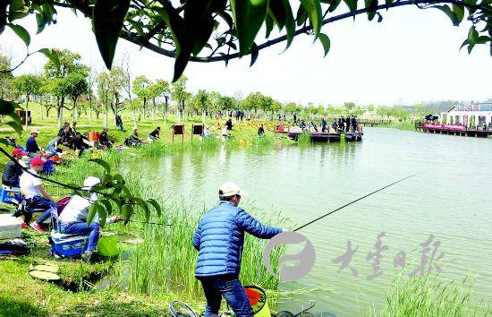 天气转暖 盐城大丰钓鱼比赛吸引数十人参与