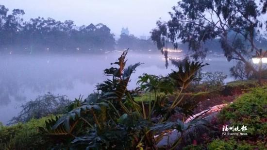 福州西湖公园现奇景烟波如幻 花境改造19日完成