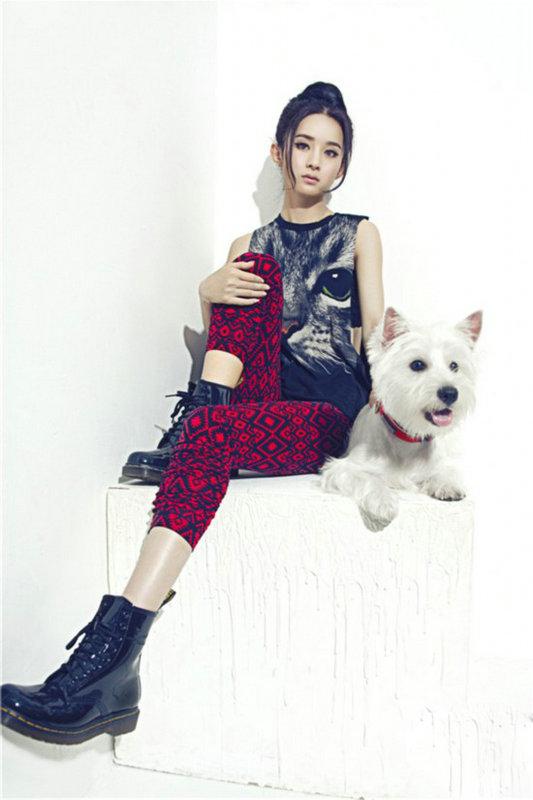 鹿晗杨幂赵丽颖李冰冰 盘点明星与动物拍摄的温馨写真